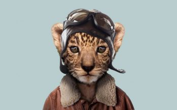 Kuidas näeksid erinevad loomad välja inimeste rõivastes? + FOTOD!