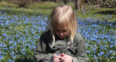 Soome psühhiaater Jari Sinkkonen: Alla 3-aastane laps ei vaja haridust, vaid tuttavate inimeste lähedust