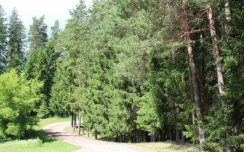 Helena-Reet: Puhkus (vol4) – Võrtsjärve ääres, Paistu surnuaial ning Intsu külas Männiku Metsatalus
