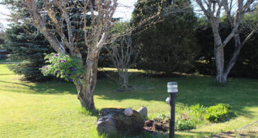 NEED aiatööd võta ette märtsis