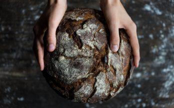 Skandinaavlased on söönud tuhandeid aastaid toitu, mis meeldib soolebakteritele üle kõige