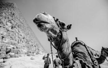 Egiptuse populaarsest kuurortlinnast vuhiseb nüüd vaid tuul läbi