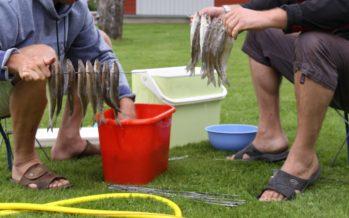 Maaelu Edendamise Sihtasutus: Eesti kalandussektori ettevõtted saavad laenu
