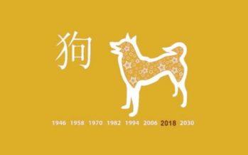 PÕHJALIK Hiina horoskoop 2018. aastaks: Vaata, mida toob sulle 15.veebruaril algav Koera aasta