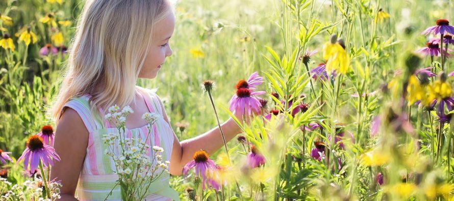 NENDEST omadustest saad aru, et sinu laps on emotsionaalselt intelligentne