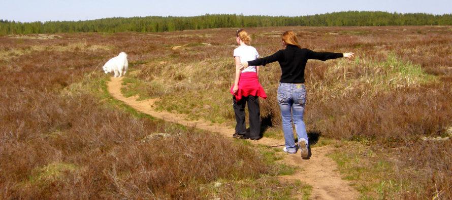 Reisi Eestis: 8 põhjust Eestis reisimiseks