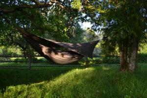 8 põhjust Eestis reisimiseks