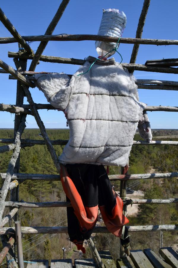 Reisi Eestis: 8 põhjust Eiffeli torni tõusmiseks