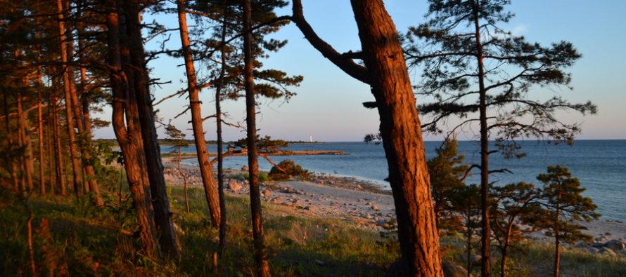 Reisi Eestis: 8 põhjust Matsirannas peesitamiseks + FOTOD!