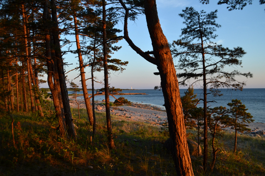 Reisi Eestis: 8 põhjust Matsirannas peesitamiseks