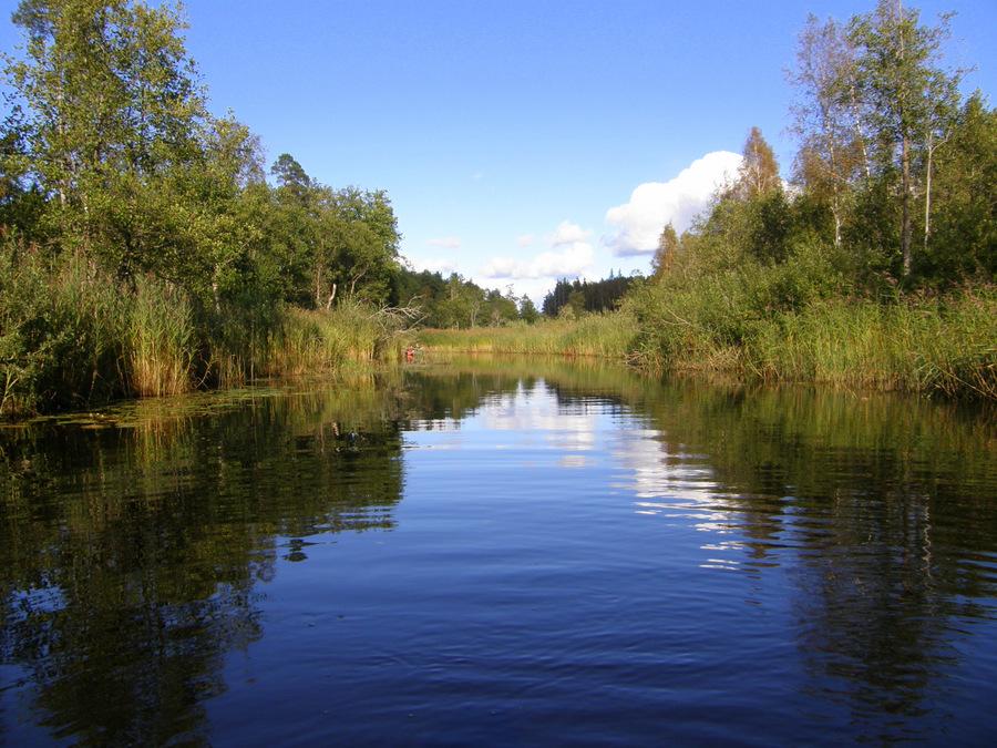 Reisi Eestis: 8 põhjust suvisel Soomaal kanuutamiseks