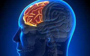 TEADLASED: Rand muudab meie aju ja vaimset tervist