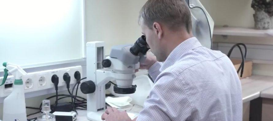 Viis aastat väldanud Norra-Eesti teaduskoostöö programm toetas enam kui tosinat uurimisprojekti