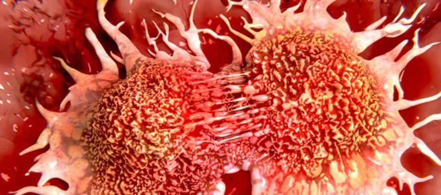 IGA KOLMAS inimene haigestub vähki. Täna sündinud lastest haigestuvad elu jooksul vähki pooled. Millest see tuleb?
