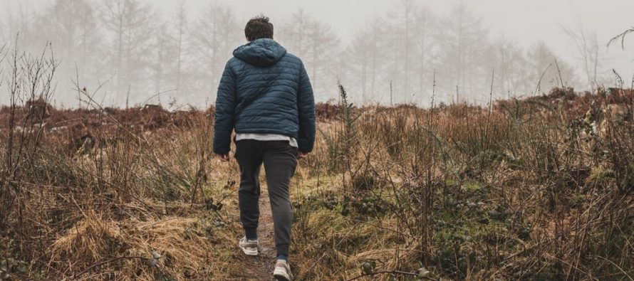 Soome mees leiutas puugipüünise – testimisel kogunes 15 minutiga ligi 100 puuki